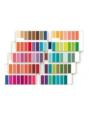 Seasonal Color Palette